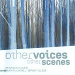 Other voices other scenes - Marcin Oleś & Bartłomiej Oleś