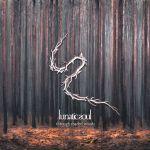 Lunatic Soul - Through Shaded Woods
