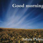 Adam Palma - Good Morning