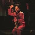 Prince - Została tylko muzyka…