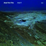 Anat Fort Trio - And If