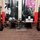 Tory zasilające kołobrzeskiej firmy Artech prezentowano z elektroniką Naima i Rotela oraz wiekowymi kolumnami Focala.